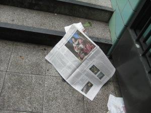 vermeer newspaper